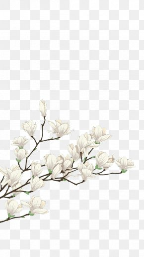 White Flowers - Flower White Computer File PNG