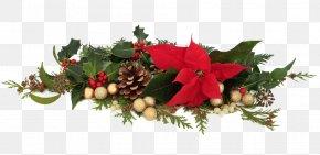 Christmas Decoration - Poinsettia Decorative Arts Christmas Decoration PNG