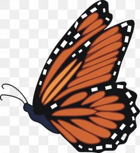 Cartoon Monarch Butterfly - Monarch Butterfly Clip Art PNG