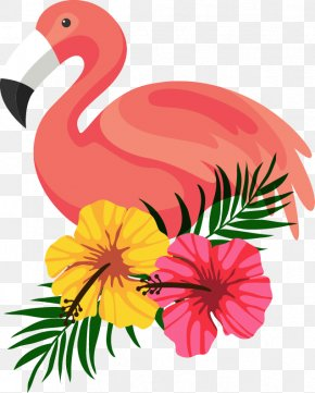 Beautifully Decorated Beautiful Flamingo Flower Frame PNG