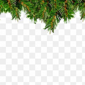 Christmas Tree - Christmas Tree Leaf Christmas Ornament PNG