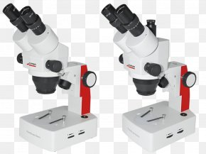 Microscope - Stereo Microscope Optics Fluorescence Microscope Eyepiece PNG