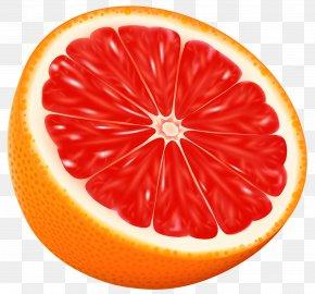 Orange Snake Cliparts - Orange Juice Clip Art PNG