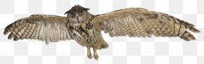 Flying Owl - Eurasian Eagle-owl Great Horned Owl Bird Great Grey Owl PNG