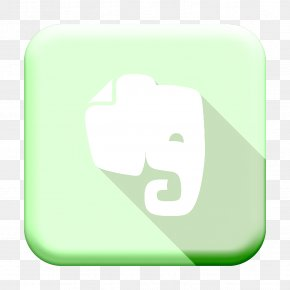 Symbol Technology - Elephant Icon Evernote Icon Social Media Icon PNG