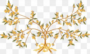 Tree - Branch Tree Acacia Clip Art PNG