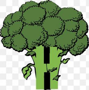 Broccoli Cliparts - Broccoli Vegetable Clip Art PNG