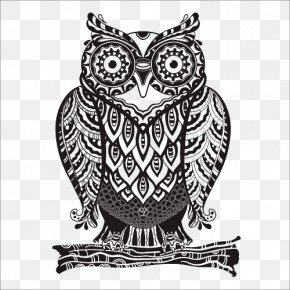 Owl - Owl Drawing Royalty-free Euclidean Vector PNG