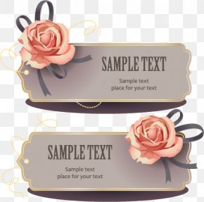 Rose Decorative Tag Vector - Rose PNG