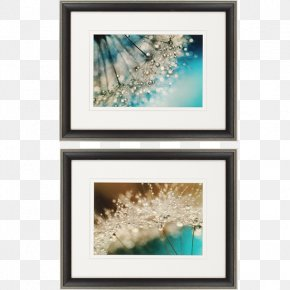 Painting - Picture Frames Work Of Art Floral Design Abstract Art PNG