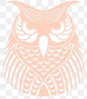 Owl - Owl Visual Arts Beak Clip Art PNG