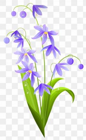 Pink Spring Flower Clipart - Flower Euclidean Vector Lilium Clip Art PNG