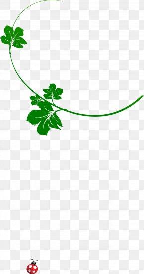Leaf - Leaf Green Download Clip Art PNG