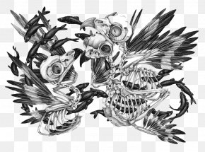 Skull - Visual Arts Drawing Illustrator Illustration PNG