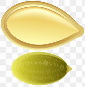 Pumpkin Seed Clip Art - Product Yellow Oval Design PNG