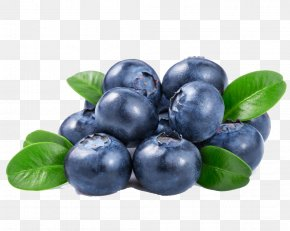 Blueberry Fruits And Vegetables - Orange Juice Blueberry PNG