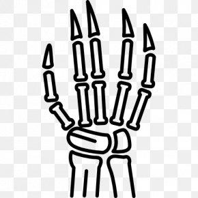 Hand - Hand Human Body Thumb PNG