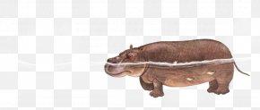 Diving Rhino - Rhinoceros Icon PNG