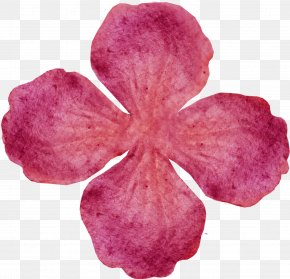 Flower For My Love - Cut Flowers Definition 3 June PNG
