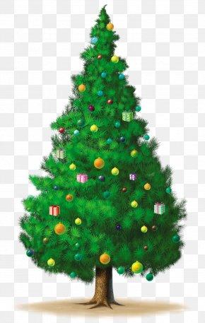 Christmas Tree - Christmas Tree Clip Art PNG