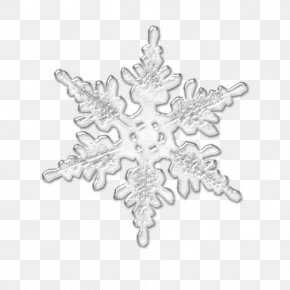Snowflake - Snowflake Christmas Ornament White Symmetry Pattern PNG