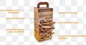 Mushroom - Oyster Mushroom Back To The Roots Edible Mushroom Morchella PNG