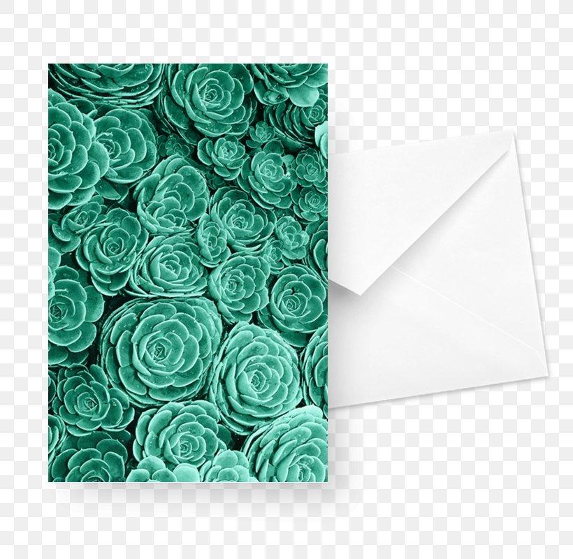 Desktop Wallpaper Succulent Plant Lock Screen Wallpaper Png
