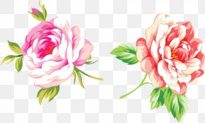 Peony Watercolor - Mother's Day Holiday Birthday Gift Ansichtkaart PNG