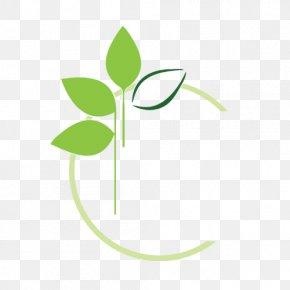 Leaf - Leaf Logo Brand Font PNG