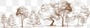 Tree - Watercolor Painting Art Royalty-free PNG