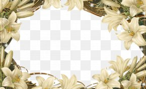Flower Frame Border - Flower Floral Design Picture Frame PNG