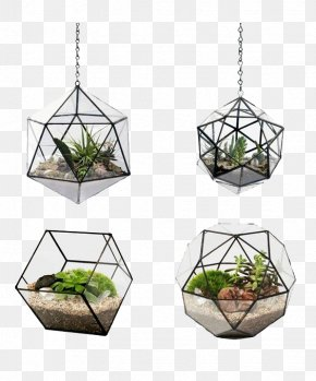 Plant Potted Wall - Flowerpot Terrarium Glass Android PNG