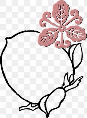 Peach Flower - Flower Picture Frames Clip Art PNG