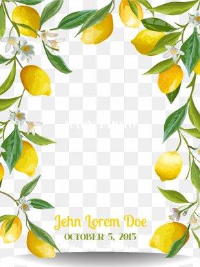 Fresh Lemon Border - Lemon PNG