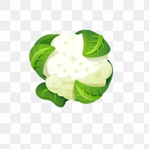 Cartoon Cauliflower - Cauliflower Broccoli Ingredient Food PNG