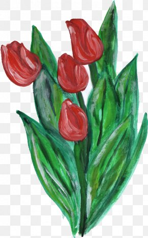Flower Paint - Flowering Plant Cut Flowers Tulip Liliaceae PNG
