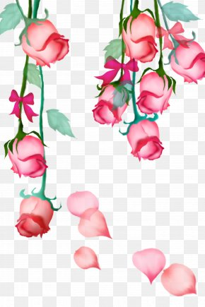 Pink Roses - Garden Roses Beach Rose Pink Petal Flower PNG