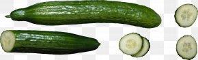 Green Cucumber Image - Sushi Cucumber Makizushi Pasta Project California Roll PNG