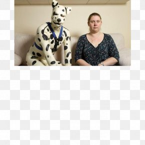 Dog Man - Puppy Dalmatian Dog Male Cat People And Dog People Domestication PNG