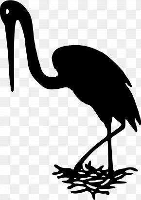 Bird - Bird Pelican White Stork Silhouette Clip Art PNG