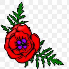 Litigation Cliparts - Remembrance Poppy Armistice Day Common Poppy Clip Art PNG