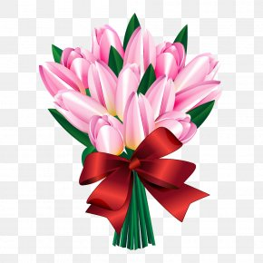 Tulips - Tulip Flower Euclidean Vector Drawing PNG