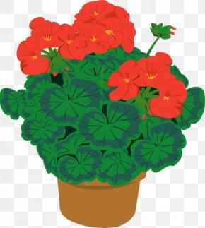 Geranium - Clip Art: Transportation Flowering Pot Plants Houseplant Openclipart PNG