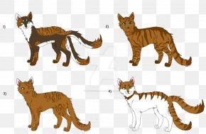 Cat - Wildcat Lion Terrestrial Animal Fauna PNG