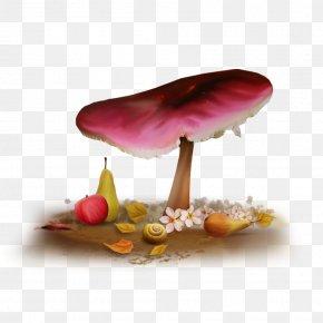 Forest Mushroom - Night Blog Sky Wallpaper PNG