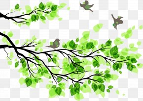 Green Tree - Branch Leaf Wall Decal Tree PNG