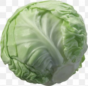 Cabbage Image - Cabbage Cauliflower Vegetable Broccoli PNG