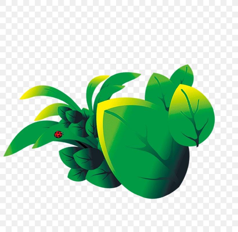 Cartoon Leaf Png 800x800px Cartoon Animation Drawing Fresco Fruit Download Free