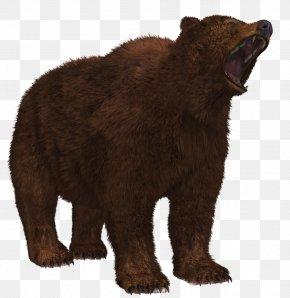 Bear - Alaska Peninsula Brown Bear Image File Formats PNG