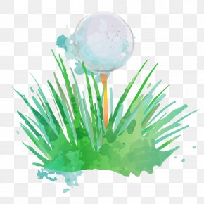 Golf - Golf Ball Golf Club Watercolor Painting PNG